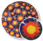 Yellow Sun Millefiori - 96 Coe