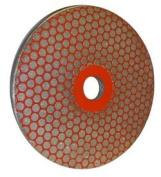 Fine 260 Grit Grinder Disc