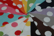 Cotton Medium Dots 13cm Stacker By Riley Blake 5-360-15