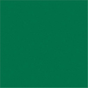 Rainbow Classic Felt 23cm x 30cm -Kelly Green 24 per pack