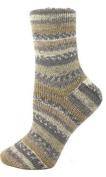 Premier Yarns NOM060878 Wool Free Sock Yarn, Pueblo