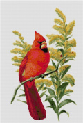 Kentucky State Bird and Flower Counted Cross Stitch Pattern