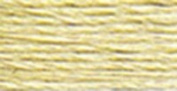 Anchor Six Strand Embroidery Floss 8.75 Yards-Sand Stone 12 per box
