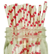 Polka Dot Paper Straw 25pcs Fuchsia -Just Artefacts Brand