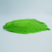 10pcs Ostrich Feather Green 25cm - 30cm Natural Feathers Wedding, Party ,Home ,Hairs Decoration