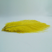 10pcs Ostrich Feather Gold 25cm - 30cm Natural Feathers Wedding, Party ,Home ,Hairs Decoration