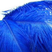 10pcs Ostrich Feather Blue 25cm - 30cm Natural Feathers Wedding, Party ,Home ,Hairs Decoration