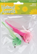 Natural Accents Feather Birds 3.5 2/Pkg-Pink/Green
