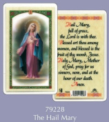 Rosarybeads4u Prayer Verse Card Laminated The Hail Mary