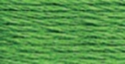 Anchor Six Strand Embroidery Floss 8.75 Yards-Grass Green Medium 12 per box