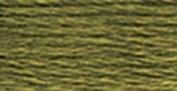 Anchor Six Strand Embroidery Floss 8.75 Yards-Fern Green Medium Dark 12 per box