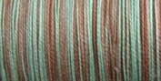 Sulky Blendables Thread 12 Weight 330 Yards-Chocolate Mint