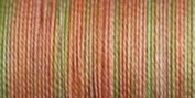 Sulky Blendables Thread 12 Weight 330 Yards-Summer Fruit