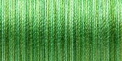 Sulky Blendable Thread 12 Wt King Size 330 Yards Summer Grass