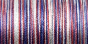 Sulky Blendable Thread 12 Wt King Size 330 Yards America