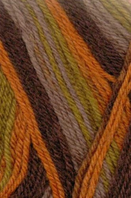 Austerman Step Sock Yarn 0025