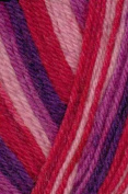 Austerman Step Sock Yarn 0026
