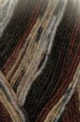 Austerman Step Sock Yarn 0023