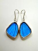 Blue Morpho Butterfly Wing Small Earrings