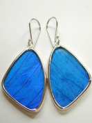 Blue Morpho Butterfly Wing Large Earrings