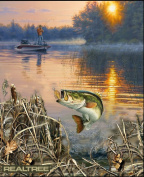 REAL TREE COTTON FISHING PANEL BY SYKEL-REAL TREE TROUT PANEL-SOLD BY THE PANEL