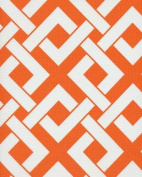 140cm BOXED IN TANGERINE TANGO INDOOR/OUTDOOR FABRIC BY THE YARD