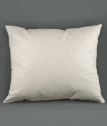 25cm x 46cm Down Pillow Form - 5/95