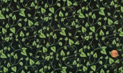 Quilting Treasures Kate Knight 'Summer Garden' Vines and Leaves on Black Fabric By the Yard