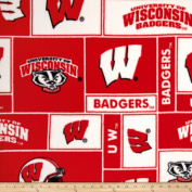 Collegiate Fleece University of Wisconsin Blocks Fabric