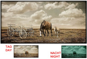 Horses on the Fields Canvas Wall Art Print with 5 Astonishing Glowing Stars Gift By Startonight 60cm X 120cm