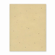 Grow-a-Note Plantable Seed Paper, 10 sheets, 20cm - 1.3cm x 28cm , Chai Tea