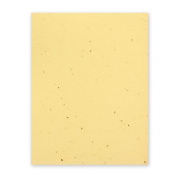 Grow-a-Note Plantable Seed Paper, 10 sheets, 22cm x 28cm , Carrot Seed Orange