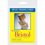 Strathmore Artist Trading Cards 6.4cm . x 8.9cm . 300 series Bristol smooth Pack 20 cards