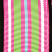 Super Duper Stripes Pink and Green Grosgrain Wired Craft Ribbon 3.8cm x 27 Yards