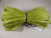 Raffia-spring green