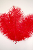 3 Pcs Ostrich Feather Drabs 30cm - 41cm Plumes - RED
