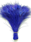 25 Pcs Peacock Feathers 25cm - 30cm Bleached ROYAL BLUE