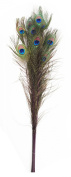 Zucker Feather Products Stem Dyed Peacock Eye, Purple