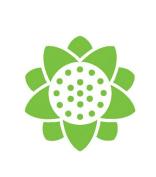 McGills Designer Botanical Punch - Sunflower