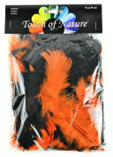 Touch of Nature Turkey Flat Feathers for Arts and Crafts, Halloween Mix
