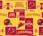 College Iowa State UniversityTM CyclonesTM Fleece Fabric Print By the Yard