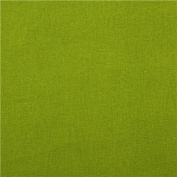 solid grass green echino canvas fabric from Japan