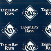 MLB Tampa Bay Rays Baseball Print Fleece Fabric By the Yard