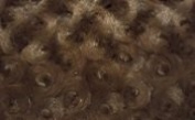 Luxurious Minky Rosebud Fabric - Chocolate Brown