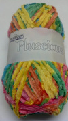 Pluscious Yarn 11 Rainbow
