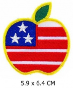 Big Apple New York US Embroidered Easy Iron On Patch