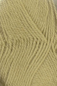 Cleckheaton Country 8 Ply 1864 Green