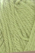 Nashua Handknits Creative Focus Superwash 06 Light Green