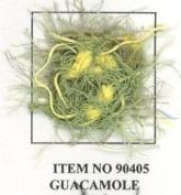 SAMBA Knitting Yarn Guacamole No. 90405