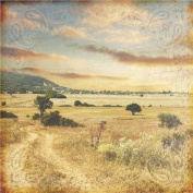 Western Paper 30cm x 30cm -Home On The Range